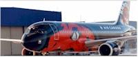 tmb toronto raptors aircraft 1